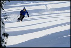986b3cbda0d50 Skier and Shadows at Whitefish Mountain Resort by David Marx