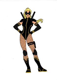 Batman Year One speaks for itself! The first year of Batmans career! Here is my idea for Black Canary who would be Bruce's ally and first team mate (I've always thought she fits the best in t...