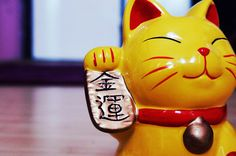 Maneki neko #japanese #cute