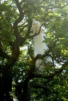 White Peacock...not a wedding dress - like  I thought at first -Ha Ha