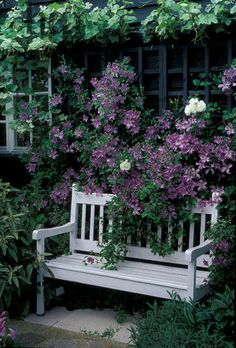Clematis - stealing the show from a charming wood bench. Clematis - stealing the show from a charming wood bench. Unique Garden, Diy Garden, Dream Garden, Garden Landscaping, Garden Seating, Garden Benches, Garden Spaces, Garden Inspiration, Garden Furniture