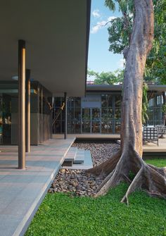 NRT - Nailert Park Heritage Home,© IP (in-productions) Minimalist Landscape, Outdoor Classroom, House Extensions, Urban Design, Pavilion, Sidewalk, Patio, Architecture, Gallery