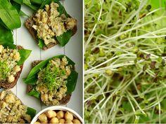 Delicious blog: Cizrnovo-slunečnicový salát