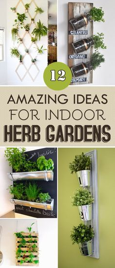 Indoor Vegetable Gardening 12 Amazing Ideas For Indoor Herb Gardens - Check out these 12 creative DIY indoor herb garden ideas that are not only aesthetically pleasing, but are useful and easy to maintain. Apartment Herb Gardens, Apartment Balcony Garden, Indoor Vegetable Gardening, Organic Gardening, Herb Garden Indoor, Urban Gardening, Indoor Herb Planters, Planter Garden, Veggie Gardens