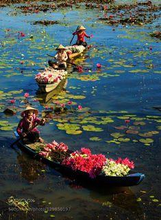 Оформление долгосрочной визы во Вьетнам со скидкой 25%…