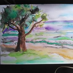 Sketches of Mooloolaba. Gray Instagram, Landscape Illustration, Watercolour, Sketches, Ink, Beach, Painting, Pen And Wash, Drawings