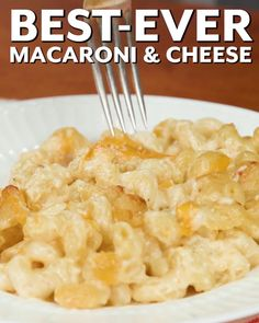 In the South, we know that mac and cheese is worthy of the Thanksgiving table just like every other creamy casserole and hearty carb-packed dish—especially this best-ever version—because down here, mac 'n cheese is like everyone's favorite aunt. #macncheese #classicrecipes #southernliving