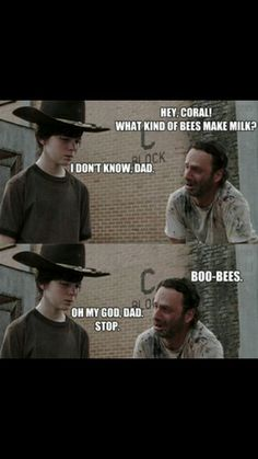 The Return of The Walking Dad Jokes - The Walking Dead Memes that live on after the characters and season ended. Memes are the REAL zombies of the show. Walking Dead Funny, Walking Dad Jokes, Walking Dead Coral, The Walking Dad, Walking Dead Quotes, Francisco Brennand, Laughing Funny, The Walk Dead, Twd Memes