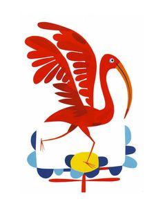 Geraldo Valerio Illustrations - Brazilian Birds