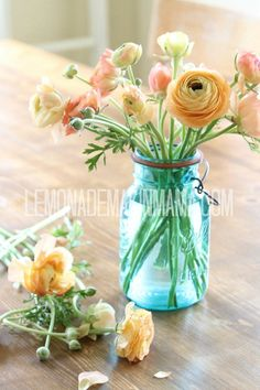 I love the feeling of the different life stages of the buds,  Ranuculus in an antique blue ball jar