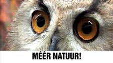 Meer natuur! Er worden honderden miljoenen bezuinigd op natuur. Jij kan dat stoppen: op 12 september.https://www.partijvoordedieren.nl/video?v=UyNQnRNBY4A
