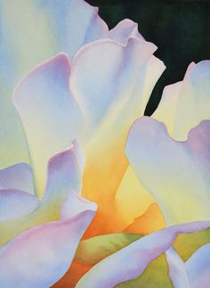 Rose Glow IV by Rachel Collins