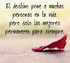 El destino pone a muchas personas en tu vida, pero solo las mejores permanecerán para siempre.