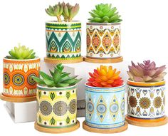 Reviews Only Channel: Small Cylinder Flower Pots for Cactus with Drainag... Colorful Succulents, Faux Succulents, Planting Succulents, Potted Plants, Ceramic Flower Pots, Ceramic Planters, Planter Pots, Succulent Planters, Succulent Gifts