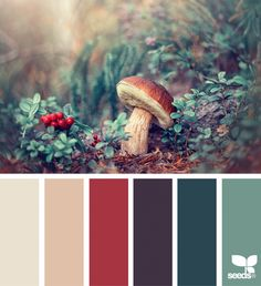 nature hues Nature HuesYou can find Design seeds and more on our website Color Schemes Colour Palettes, Nature Color Palette, Colour Pallette, Color Palate, Color Combinations, Palette Art, Vintage Color Schemes, Vintage Colour Palette, Color Schemes Design