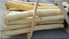 csiszolt akácfa rönkök Wood, Garden Planning, Woodwind Instrument, Timber Wood, Trees