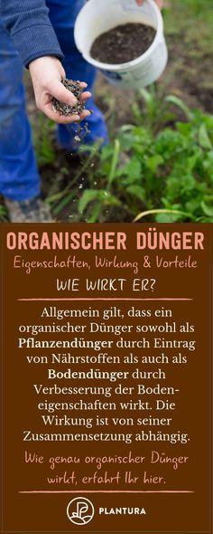 Organischer Dünger: Wie wirkt er? Beim organischen Dünger wird zwischen Bodendünger und Pflanzendünger unterschieden. Alles Wissenswerte rund um das Thema organischer Dünger und organischer Rasendünger erfahrt Ihr hier! #organischerdünger #dünger