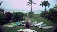 Eddie Vedder's surfboards