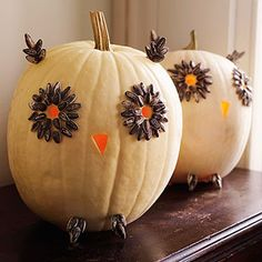 Owl Pumpkins ~ Carve out the beak and eye holes. Then, use hot-glue to affix sunflower seeds around the eyes, ears and feet (both constructed with craft sticks).