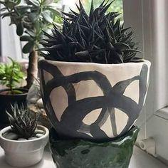 Deși avem în atelier o mică junglă de plante, ele nu stau în ghivece modelate la Gruni. Offf, știți cum e vorba aia cu cizmarul și gaura din papuc. Vlad însă are o frumusețe de colecție de suculente, și două dintre ele ne onorează ghivecele experimentale 😍 Mulțumim, Vlad, pentru poze și inspirație! Porcelain Jewelry, Planter Pots, Jewelry Making, Model, Instagram, Atelier, Scale Model, Jewellery Making