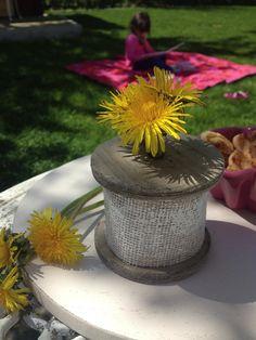 Yellow flores garden home