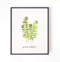 Buy 2 Get 1 Free Fern watercolor painting. Apartment decor - Wall decor - Nature print - Botanical print - Young wild fern art print - 8x10