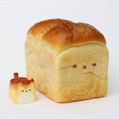 Breadcat and Meloncat at Collect and Display By Rato Kim