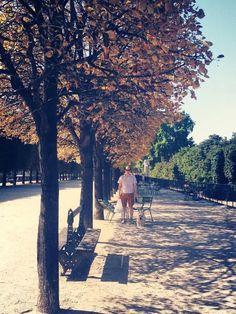 Tuilleries Gardens, Paris