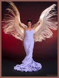 flamenca wings