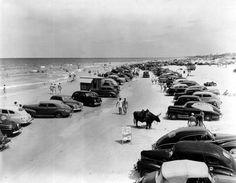 Florida Memory - Cars parked on Daytona beach