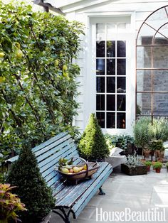 On her front terrace, antiques dealer Jeannette Whitson designed a Charleston-inspired secret garden enclosed by pear trees espaliered on a trellis.