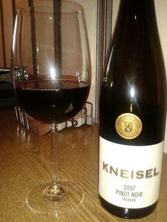 Kneisel Pinot Noor pfalz
