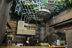The Tree House is like Bakery Lane's very own Magic Faraway Tree bar that has sprouted in the revamped Valley laneway, complete with its own Pixie, the delightful owner. Brisbane Bars, Brisbane Cbd, Tree Bar, Faraway Tree, Valley City, Build Muscle, Muscle Building, Bar Drinks, Cool Bars