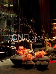 CNflower Hotel Flower Arrangements, Ikebana Flower Arrangement, Beautiful Flower Arrangements, Modern Floral Design, Flora Design, Hotel Flowers, Corporate Flowers, Floral Foam, Flower Planters