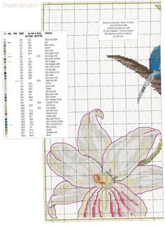 Gallery.ru / Фото #80 - Le grand livre des oiseaux - irinask