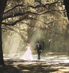 Enchanted Forest Wedding...  AMAZING!! Magical.