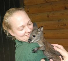 It's a new mom for Wilbur the Wallaby! Read all about this rare adoption at Blackpool Zoo.