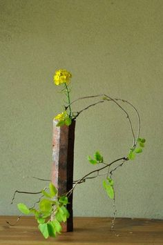 In the book, Chabana-Kogiroku (lectures on flowers for the Japanese tea ceremony) published in 1927, Sensho explained that the balance between flowers and its vase are the first to note, and that the height, the inclination and the width should be noticed next.