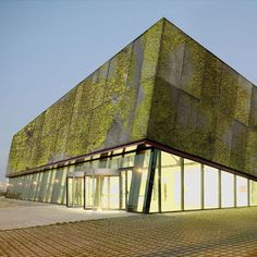 Green Facade Moss Concrete Biological concrete absorbs water and grows moss