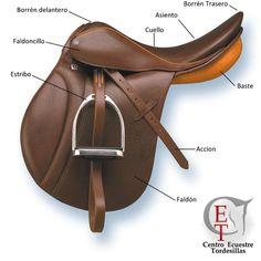 caballos bridas y bocados - Buscar con Google Equestrian Style, Equestrian Fashion, English Saddle, Horse Gear, Polo Club, Saddles, Livestock, Saddle Bags, Horses