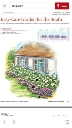Easy care garden for the sourh Garden Shrubs, Garden Beds, Home And Garden, Landscape Plans, Landscape Design, Garden Design, Flower Garden Plans, Autumn Garden, Front Yard Landscaping
