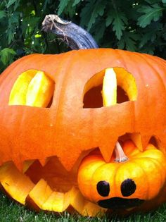 kleine Kuschelrobbe: Halloween steht schon in den Startlöchern...