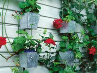 Galvanized containers are used as a wall garden for flowering plants. Containers for plants come in a variety of shapes, sizes and materials. They can make a subtle or dramatic statement to a patio, terrace or backyard garden.