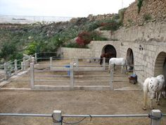 Horse stables built underground (into a retaining structure) in Tenerife