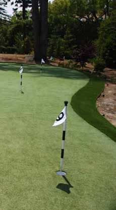 Home putting greens, playable year-round, courtesy of synthetic turf
