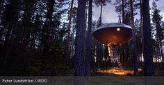 Treehotel in Harads, Schweden
