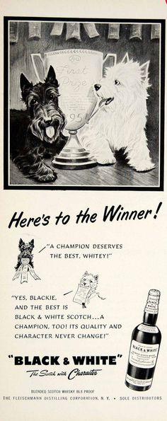 1951 AD Black White Scotch Whisky Scottish Terrier DOG PET Alcohol Liquor YFT7 | eBay