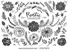 Rustic decorative plants and flowers collection. Hand drawn vintage vector design elements. - stock vector
