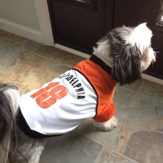 We love puppies, and we love the Flyers. so this picture makes us very happy!!