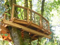 Bainbridge Island, WA  Fall 2004  This simple floating platform rests in a maple tree in a family's backyard. It is a wonderful example of how the GL and arrestor bracket system allow the tree to grow and move. The hand hewn support beams show how attention to detail makes a treehouse look great from any angle.
